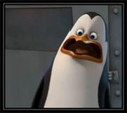 OMG-Penguinb