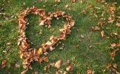 Love115