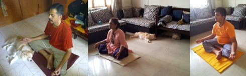 Swamily_Yoga