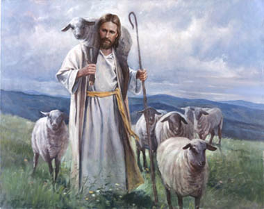 The Sheep, Sheepdog & Shepherd! (4/6)